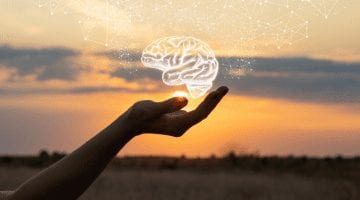 Boosting The Human Brain With BioHacking