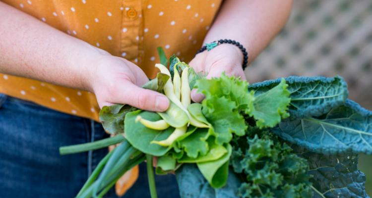 Woman holding freshly picked cruciferous veggies